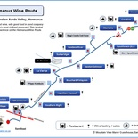 Hermanus Wine Route Map