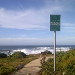 Great walks along the ocean path